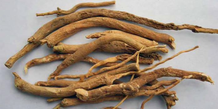 Fingerroot dried-Cu ngai