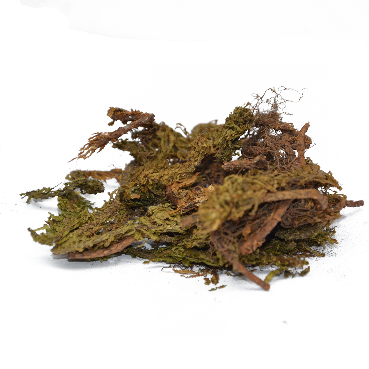Dried-Firmosses