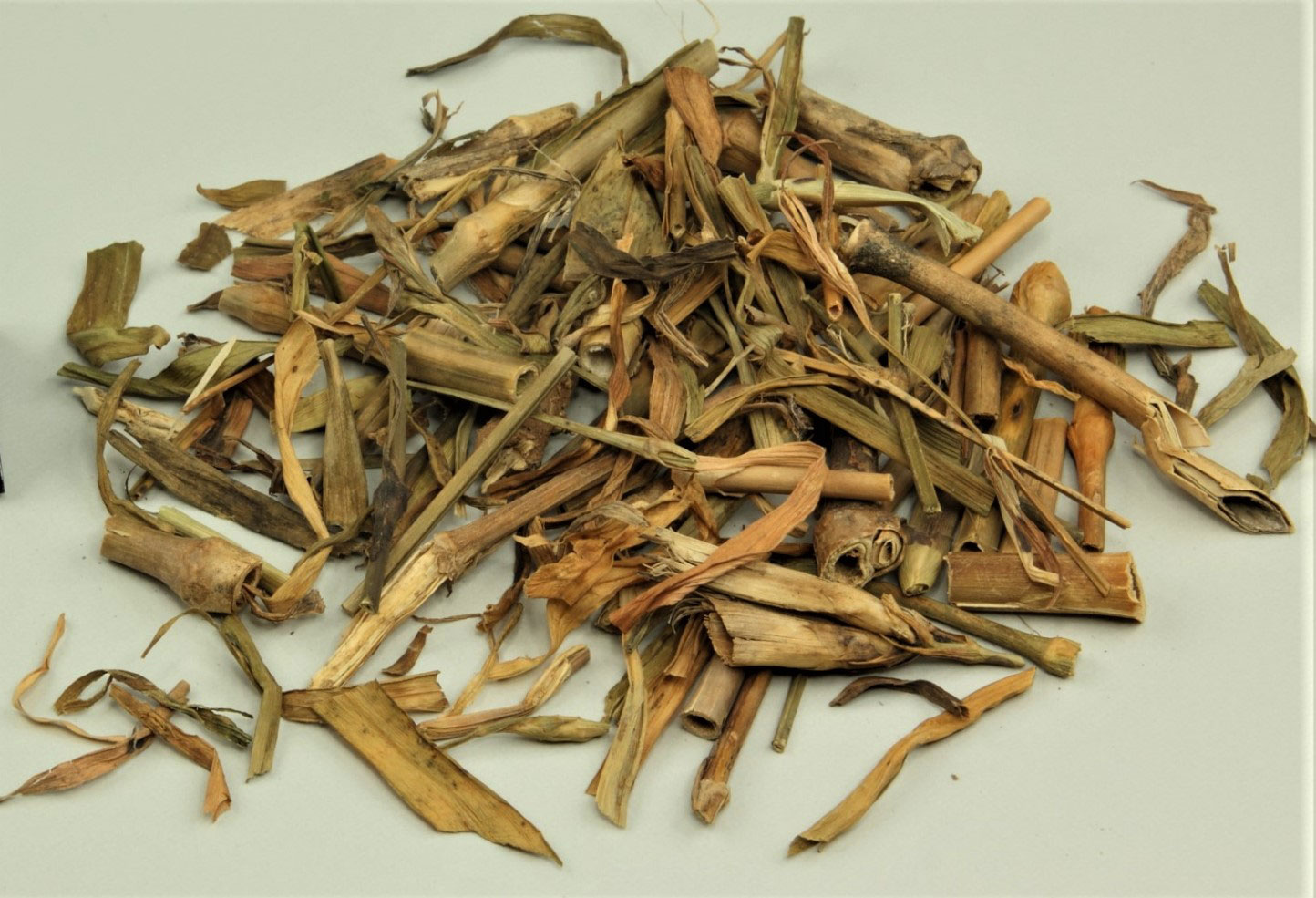 Dried-Fringed-pink