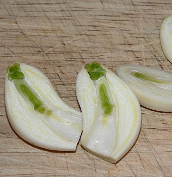 Half-cut-Garlic