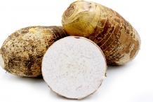 Giant-Taro-rhizome-cut