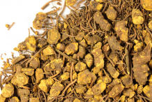 Dried-Goldenseal-root