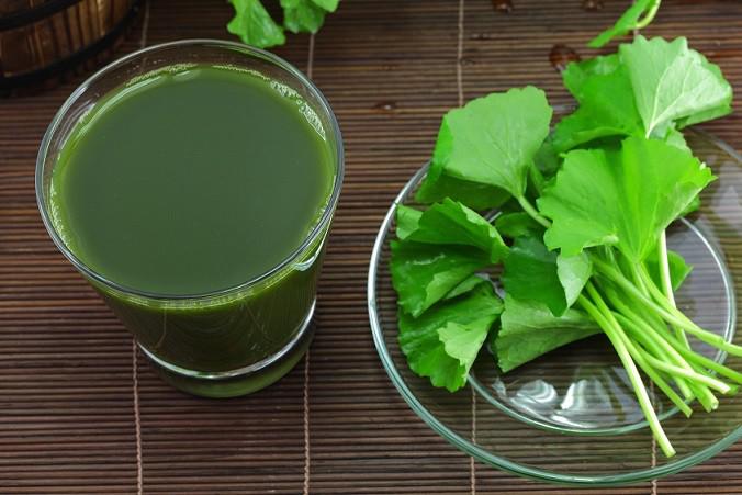 Gotu-Kola-Leaf-juice