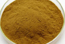 Greater-Celandine-Powder