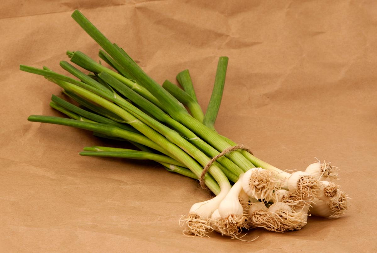 Green-garlic-2