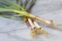 Green-garlic-5