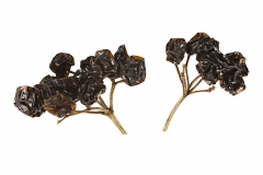 Dried-Guelder-Rose