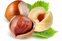 Hazelnuts-cut
