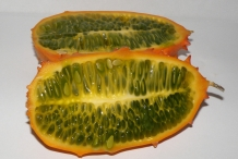 Half-cut-Horned-melon