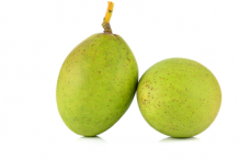 Unripe-Horse-Mango