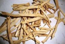 Dried-roots-of-Indian-asparagus