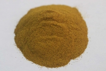 Indian-Barberry-root-powder