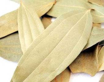 Indian-Bay-Leaf--Laurier-des-Indes