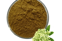 Extract-of-Indian-devil-tree