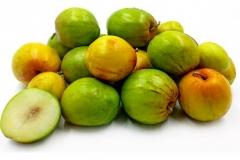 Indian-jujube-fruit
