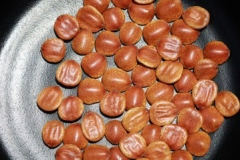 Seeds-of-Indian-Plum