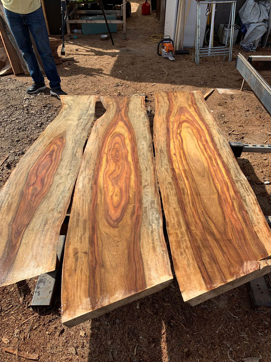 Woods-of-Indian-rosewood