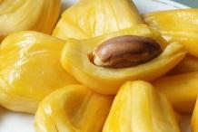Jackfrut-bulb-Khnaor
