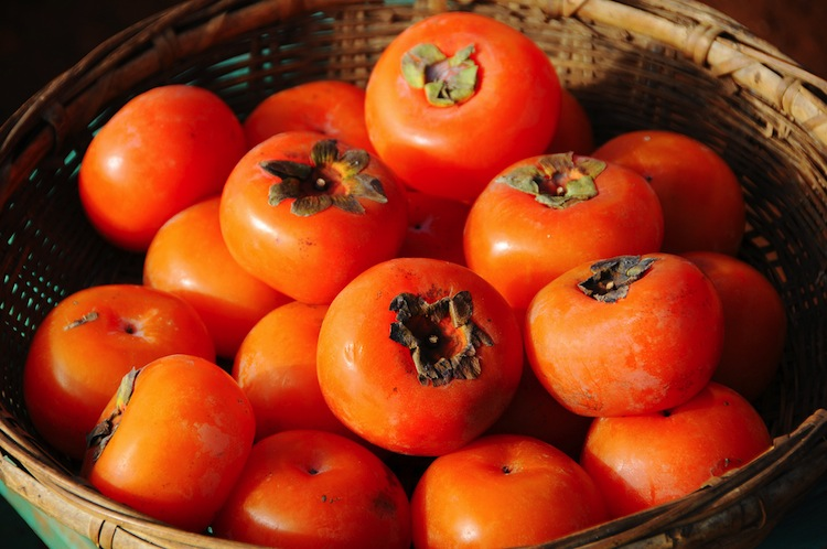 Japanese-Persimmon-collection