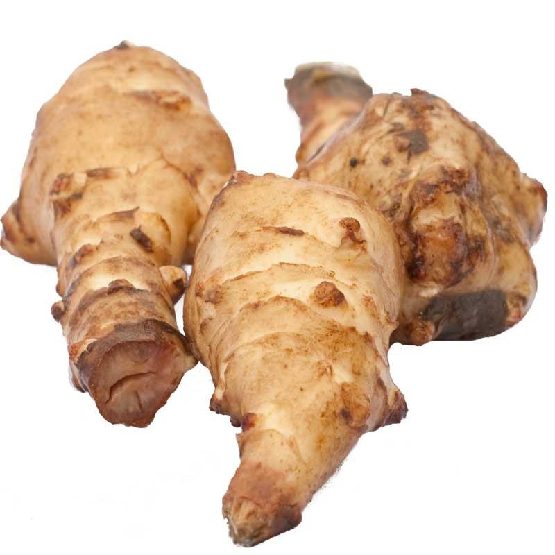 Roots-of-Jerusalem-artichoke