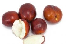 Jujube-fruit-brown-cut