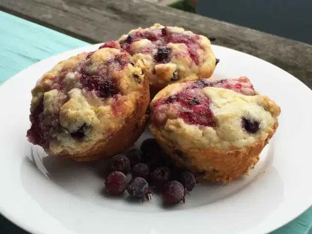 Juneberry-Muffins