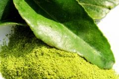 Kaffir-Lime-leaves-powder