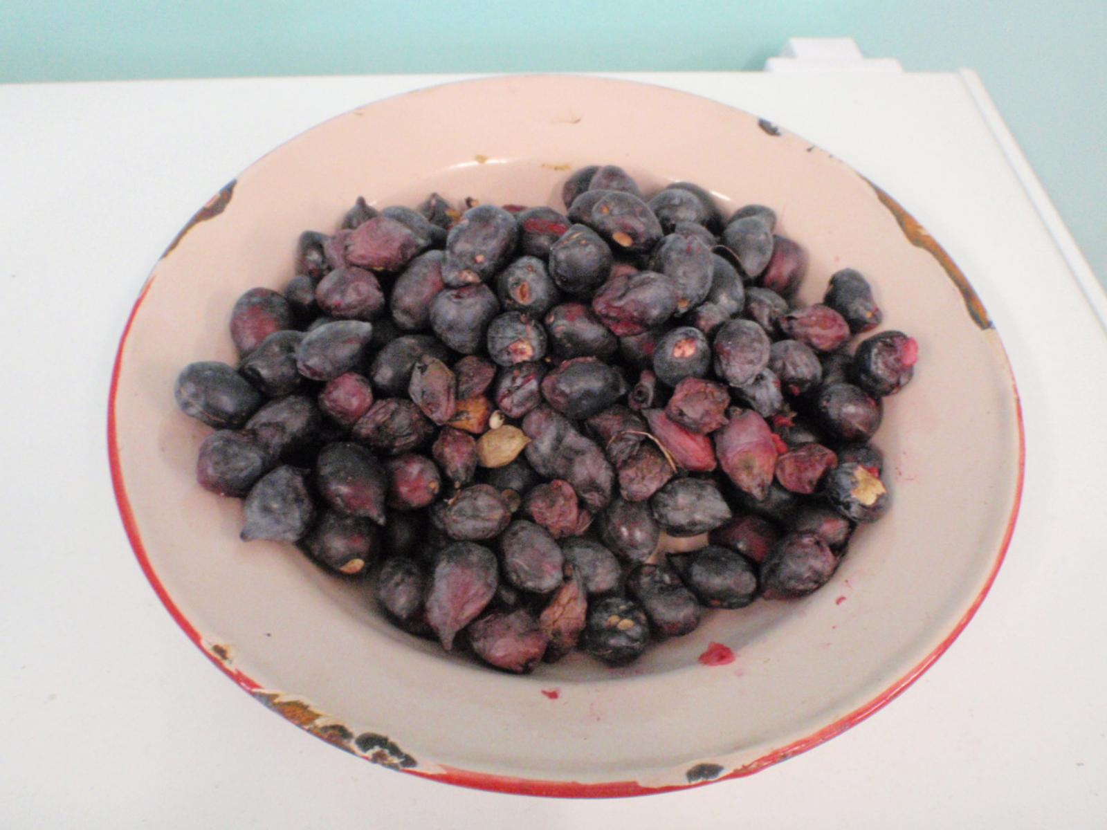 Ripe-Kakadu-plum