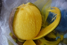 Kalimantan-mango-pulp