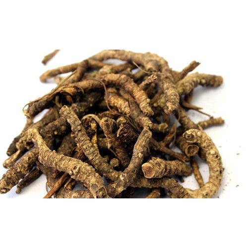 Dried-kutki-root