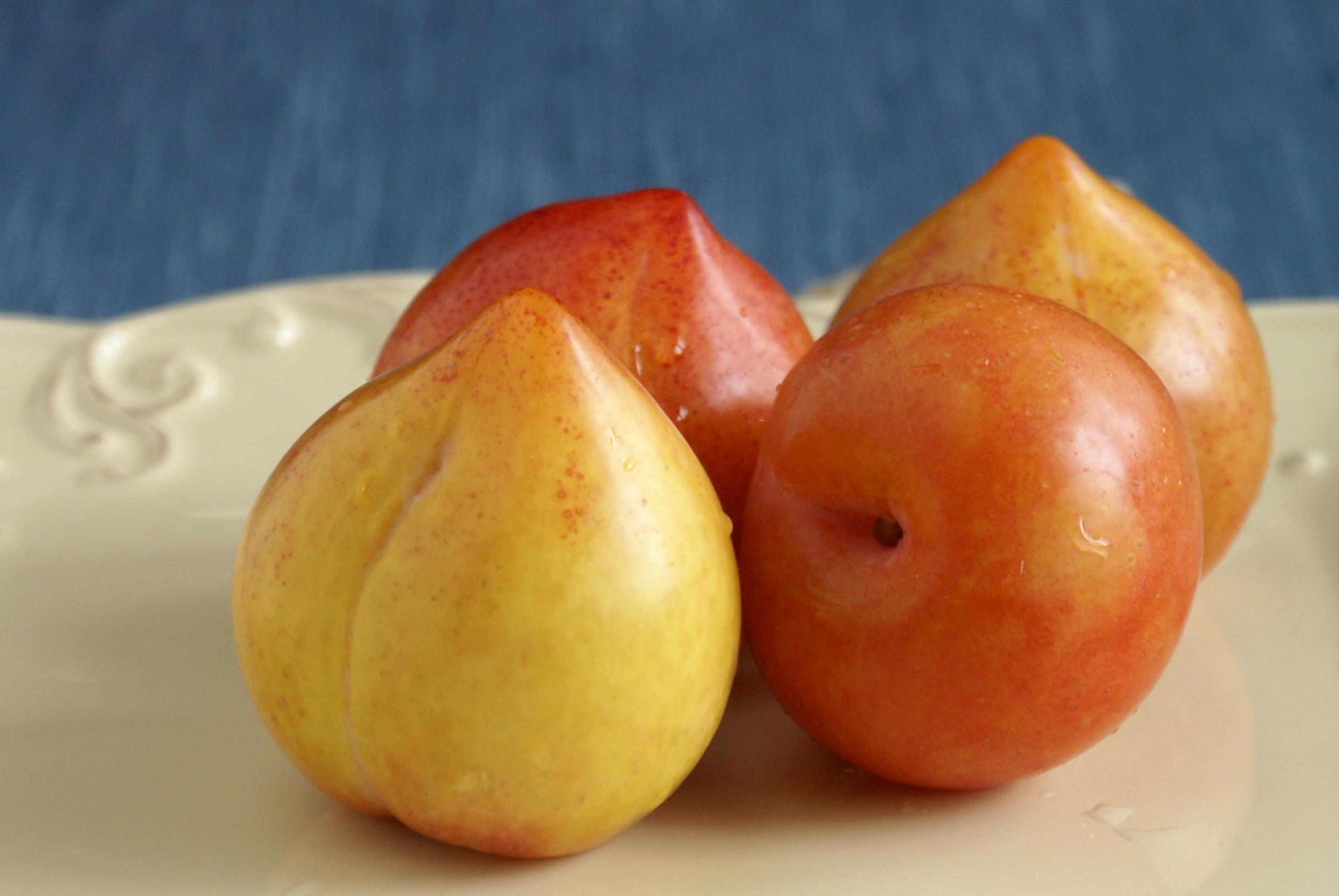 Closer-view-of-Lemon-plum-fruit