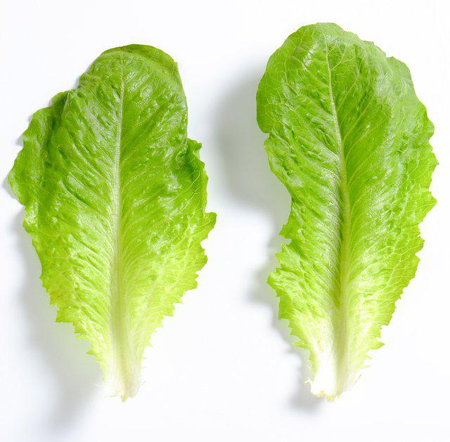 Lettuce-leaves