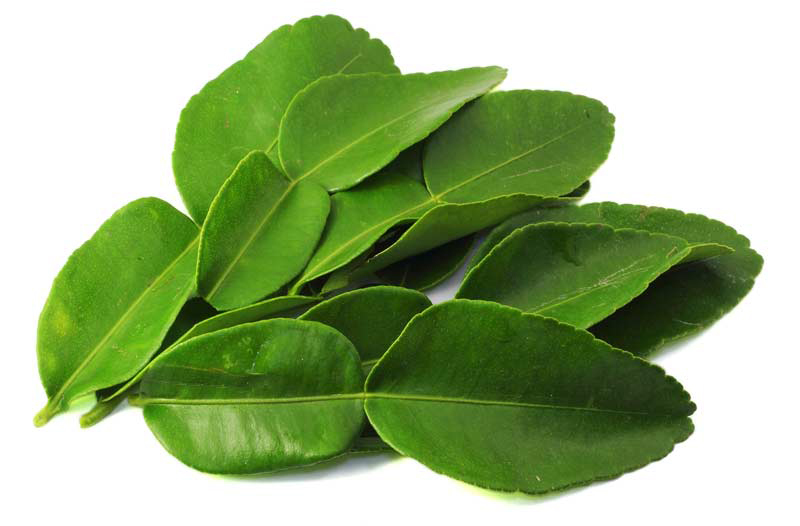 Lime-leaves