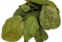 Lime-leaves-dried