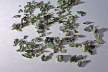 Dried-Lungwort