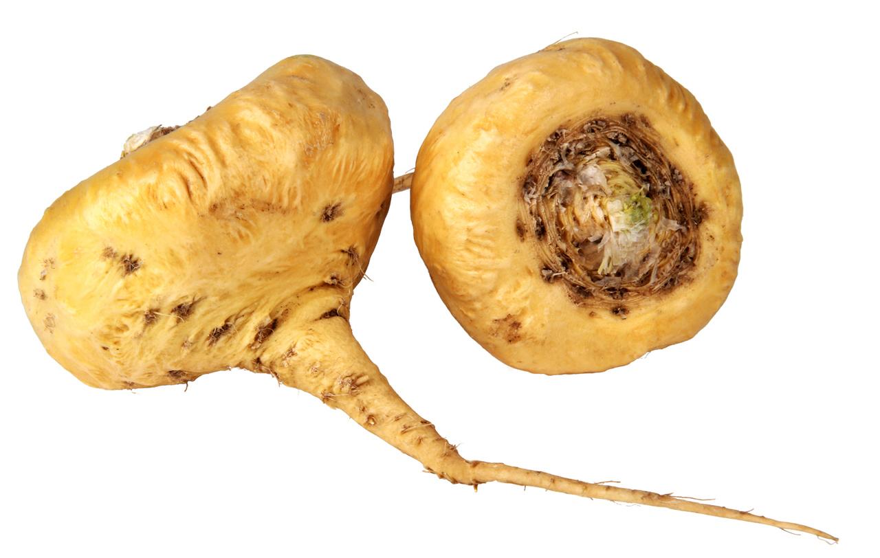 Maca-roots