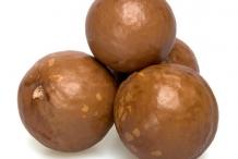 Macadamia-nut-shell