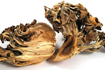 Dried-Maitake-Mushroom