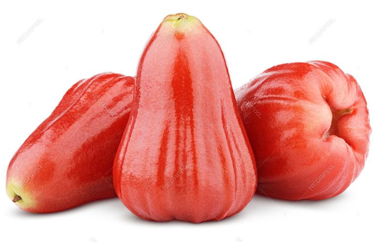 Malay-Apple