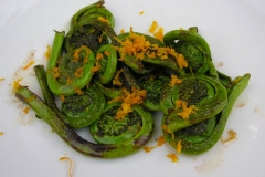 Sauteed-fiddleheads-of-Male-Fern
