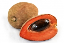 Mamey-sapote-fruit-half-cut