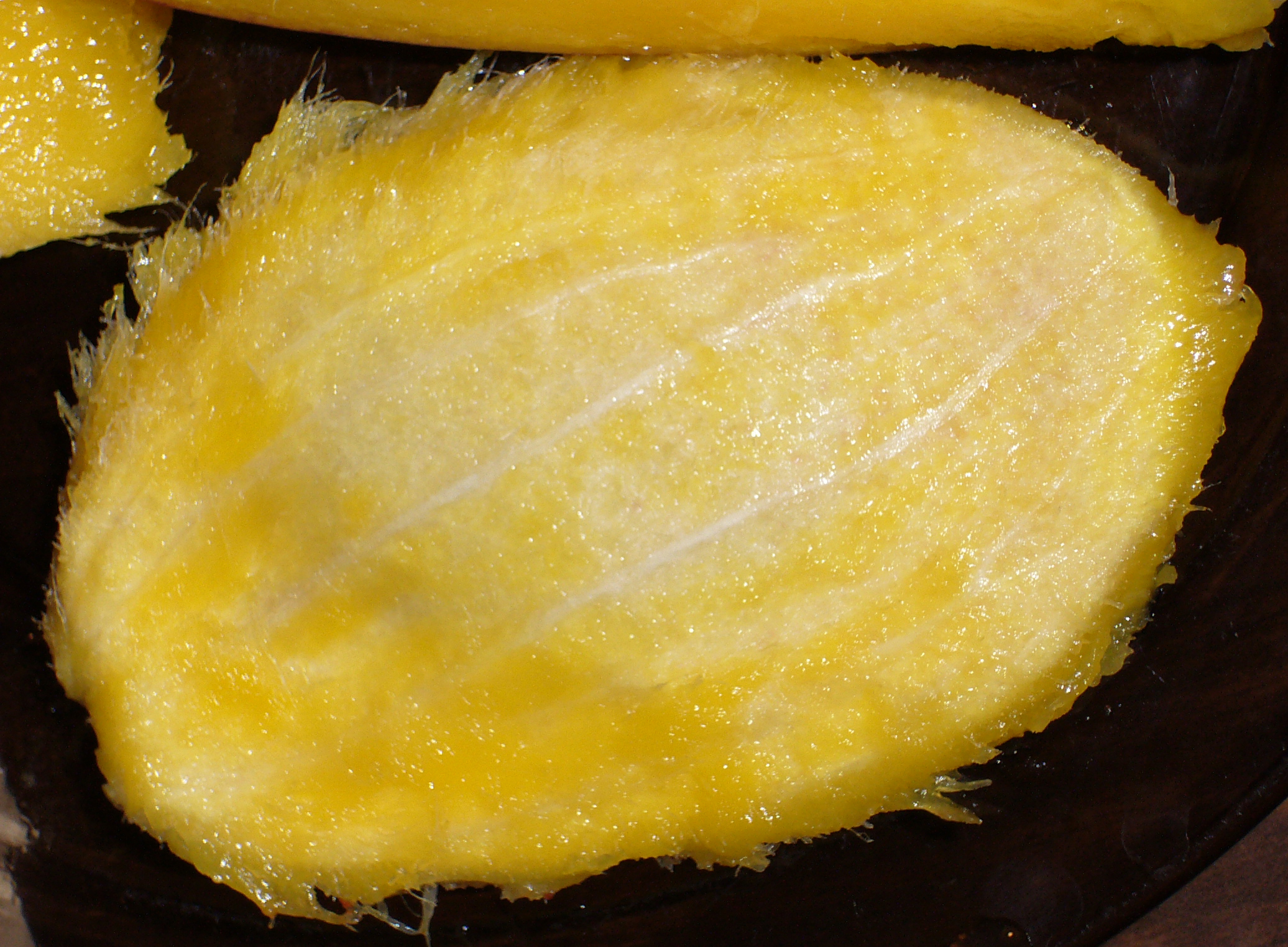 Mango-Seed-12