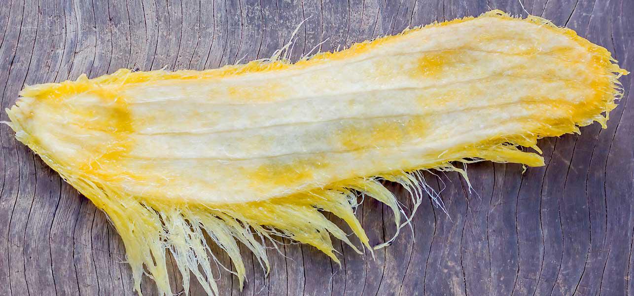Mango-Seed-3
