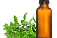 Marjoram-essential-oil