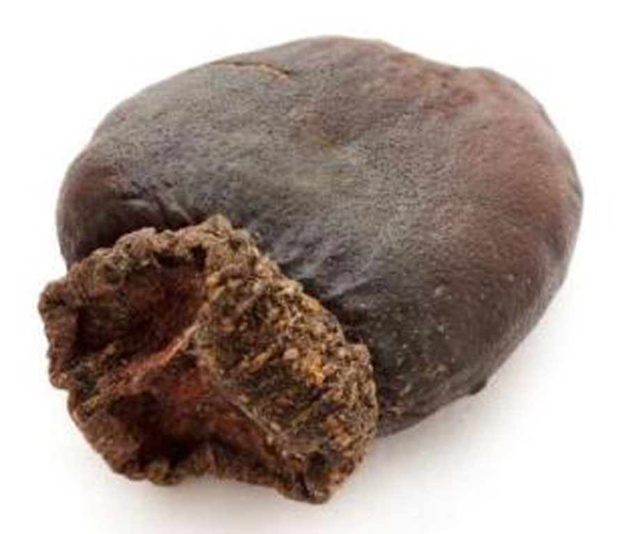 Closer-view-of-dried-fruit-of-Marking-Nut