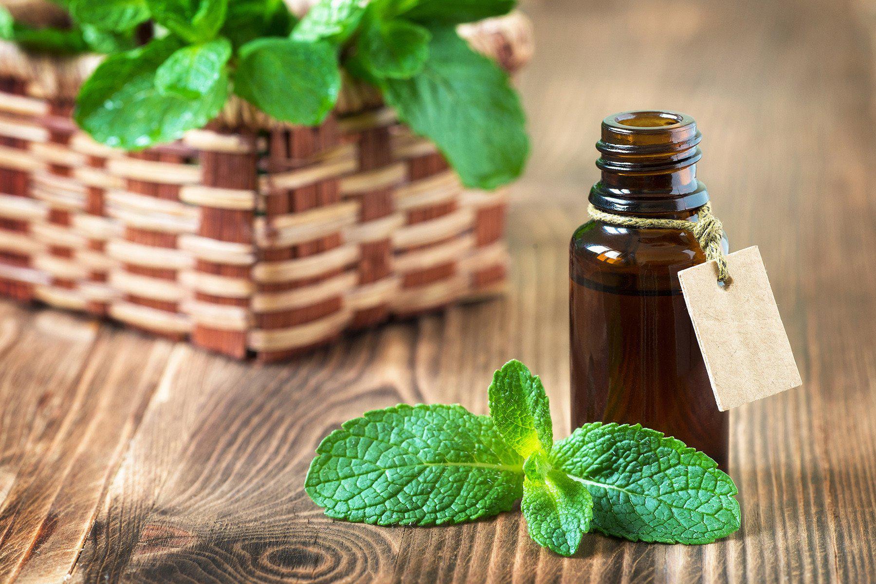 Mint-essential-oil