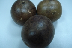 Monk-fruits
