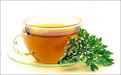 Mugwort-tea