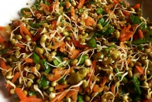 Mung-bean-sprout-salad