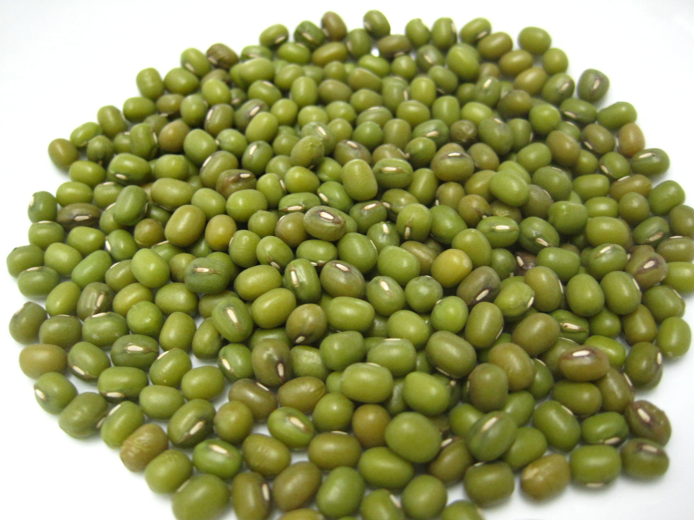 Mung beans Facts, Health Benefits and Nutritional Value